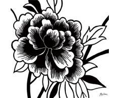 Eurographics B-HIA1103 Quadro Rosa Nera I di H. Anderson, 29x29 cm, Non Serve Cornice