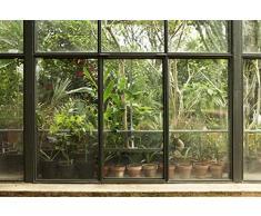 Scenolia Carta da Parati Poster panoramico Tropicale Greenhouse 4x 2,70m | Decorativo e Foto Parete XXL qualità HD