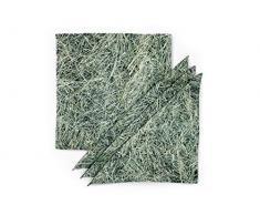 FOONKA Tovaglioli in Cotone HEU 36 x 36 cm, Set da 4 Pezzi, 100% Cotone, Grigio e Verde