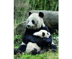 Nouvelles Images Poster 30 x 40 cm Panda Gigante e Il Suo Piccolo/Giant Panda Mother And Baby/großer Panda mit jungem Eric Baccega