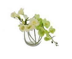 Moycor 2211616_1 - Vaso di vetro con orchidea farfalla, 16x16