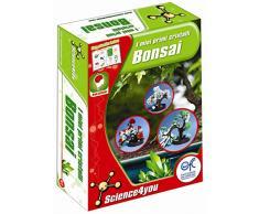 Science4you S4Y2 - I Miei Primi Cristalli Bonsai